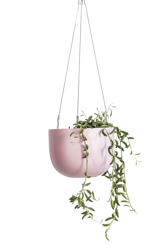"""**Candy crush** Introduce a hint of colour with the 'Maggie' hanging planter, $40, [The Balcony Garden](https://www.thebalconygarden.com.au/