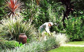 Woman in a tropical garden
