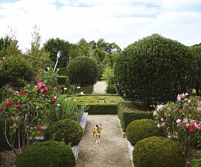 "The impressive [formal garden](https://www.homestolove.com.au/the-5-elements-needed-to-create-a-formal-garden-1907|target=""_blank"") includes a central parterre surrounded by raised beds, topiary bay tress, roses and assorted herbs."