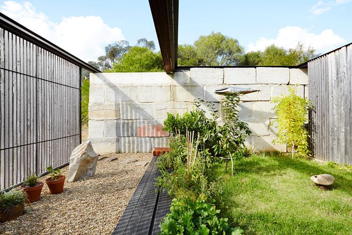 A backyard deserves to be filled with fresh produce. *Photo: Annette O'Brien / Bauersyndication.com.au*