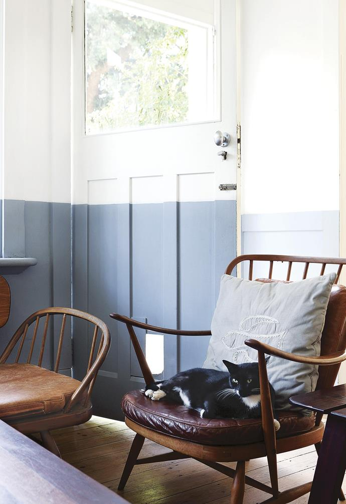 **TV room** Homeowner Rick has been collecting vintage Ercol pieces since he was 25 – the family cat approves. The grey-painted lower half of the wall creates depth.