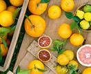 6 popular citrus fruit varieties and how to grow them
