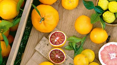 6 citrus fruit varieties you need to know about