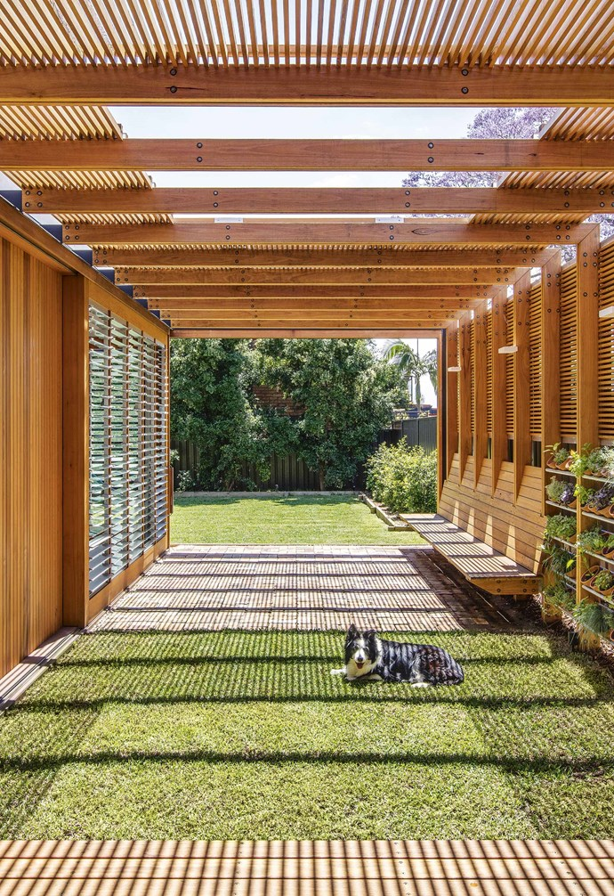 """**In the louvre** Designed as a house extension, this louvred courtyard by CplusC Architectural Worksop opens up the living space with sunlight and provides space for a herb garden. *Architecture: [CPlusC Architectural Workshop](https://cplusc.com.au/ target=""""_blank"""" rel=""""nofollow"""")   Photography: Murray Fredericks and Michael Lassman.*"""