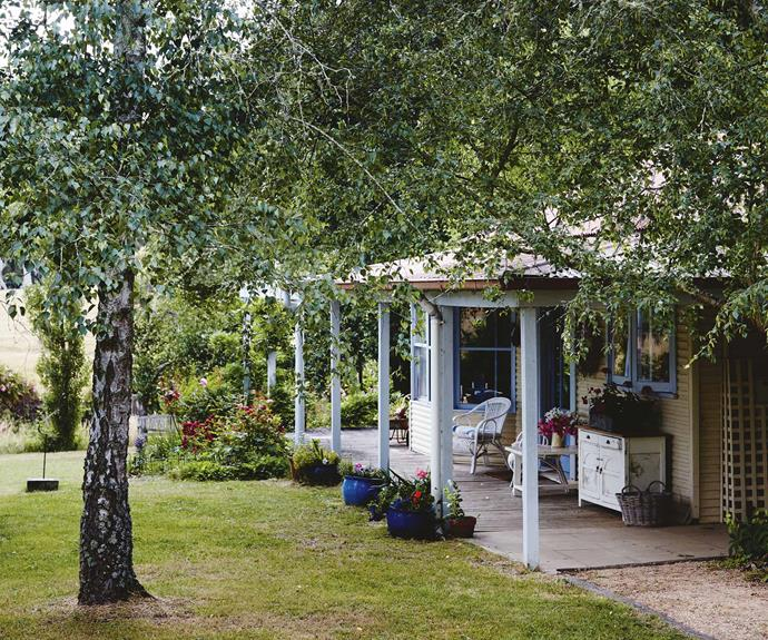 The front verandah of the cottage overlooks a garden with silver birches.