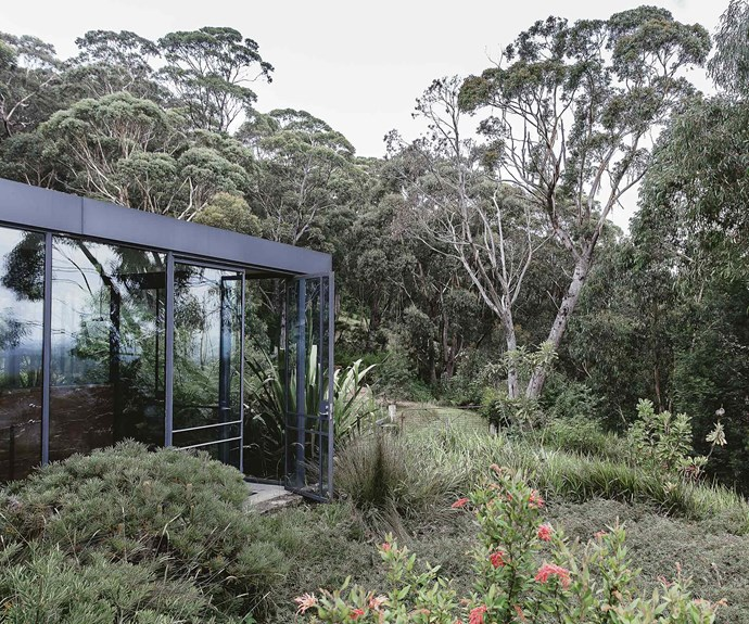 Floor-to-ceiling windows give the home a seamless connection to the surrounding bush landscape.