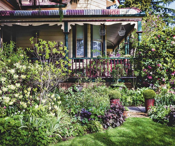A mix of formal plantings and lawn with layers of perennials and cool-climate shrubs.   Photographer: Michael Wee