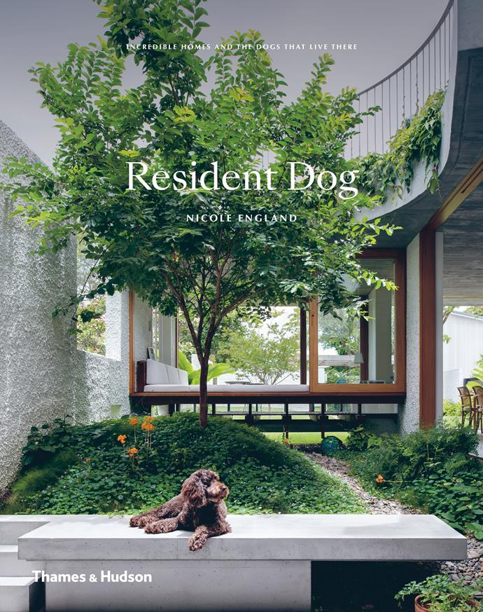 "**Resident Dog: Incredible homes and the dogs that live there** by Nicole England, $75, available for pre-order at [Booktopia](https://fave.co/2QSGGEJ|target=""_blank""
