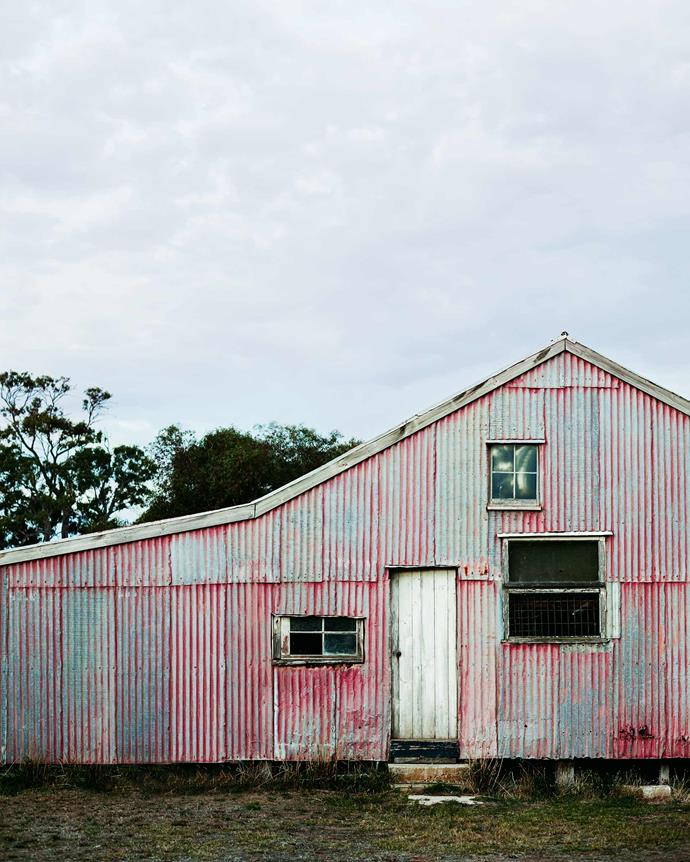 The original woolshed is still in use. *| Photography: Mark Roper | Styling: Tess Newman-Morris*