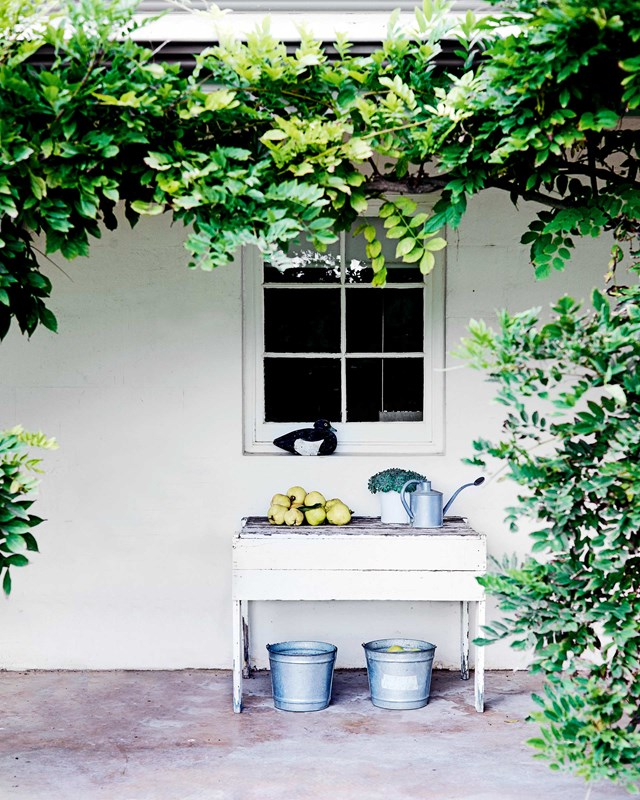 Instead of hiding away gardening equipment like watering cans and old tubs think about using them as a decorating feature.