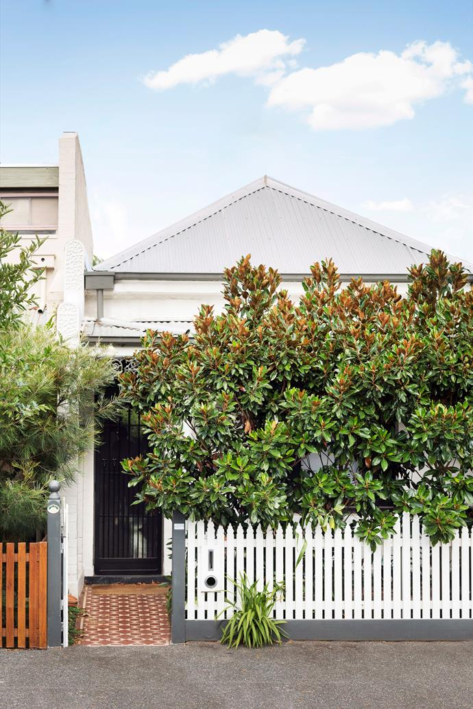 "For some, a cottage façade is the perfect opportunity to paint the trims clashing colours or to use complementary hues to create curb appeal. For others, the appeal of a cottage is being able to retreat into privacy, like [this home in Melbourne's inner North](https://www.homestolove.com.au/space-savvy-renovation-of-an-old-workers-cottage-5322|target=""_blank"") which is hidden behind a picturesque picket fence and magnolia hedge. Step inside and you'll find a sunlight-drenched home with a distinct mid-century vibe. *Photo: Martina Gemmola / bauersyndication.com.au / Story: Australian House & Garden*"