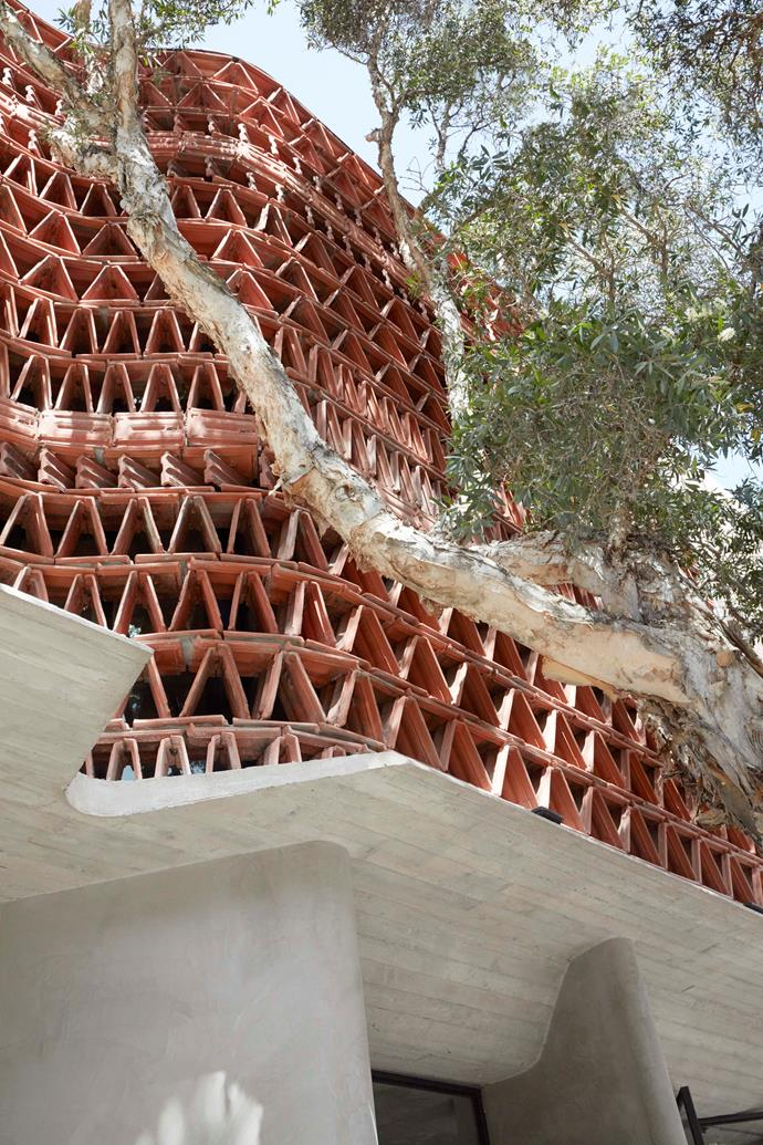 The Beehive's impressive facade, constructed from recycled Marseille terracotta roof tiles which form a brise-soleil 'sun screen'.