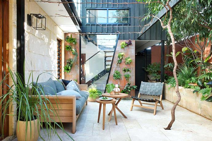 Utilising vertical space to create green walls softens the overall look of this industrial-style urban courtyard. *Photo: Matt Lowden*