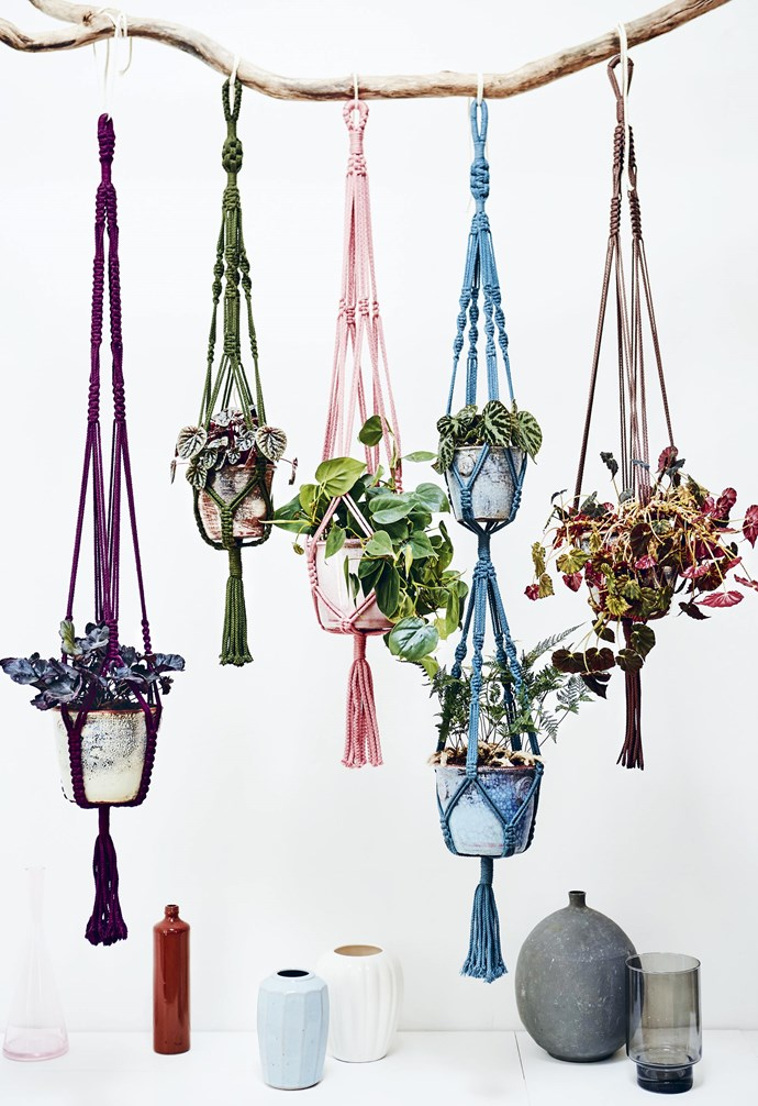 """**Rainbow connection** Create an area of focus in a space with an installation of hanging macramé plant holders. When creating an installation of any kind, put careful thought into the composition of colour, layering and placement. <br><br>Here, earthy tones meet soft pink and blue for a sweet combination. Suspend each holder at different heights and add extra hand-finished texture in the form of crackle-glazed pots. To watch a tutorial on how to make your own plant hanger [take a look over here](https://www.youtube.com/watch?v=AjrCaHAqaBI&index=4&list=PLllU4vJSf8guQFs73fzR_kXBWUFU4EFGe&t=0s