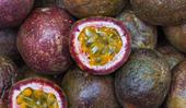 How to grow passionfruit from seed