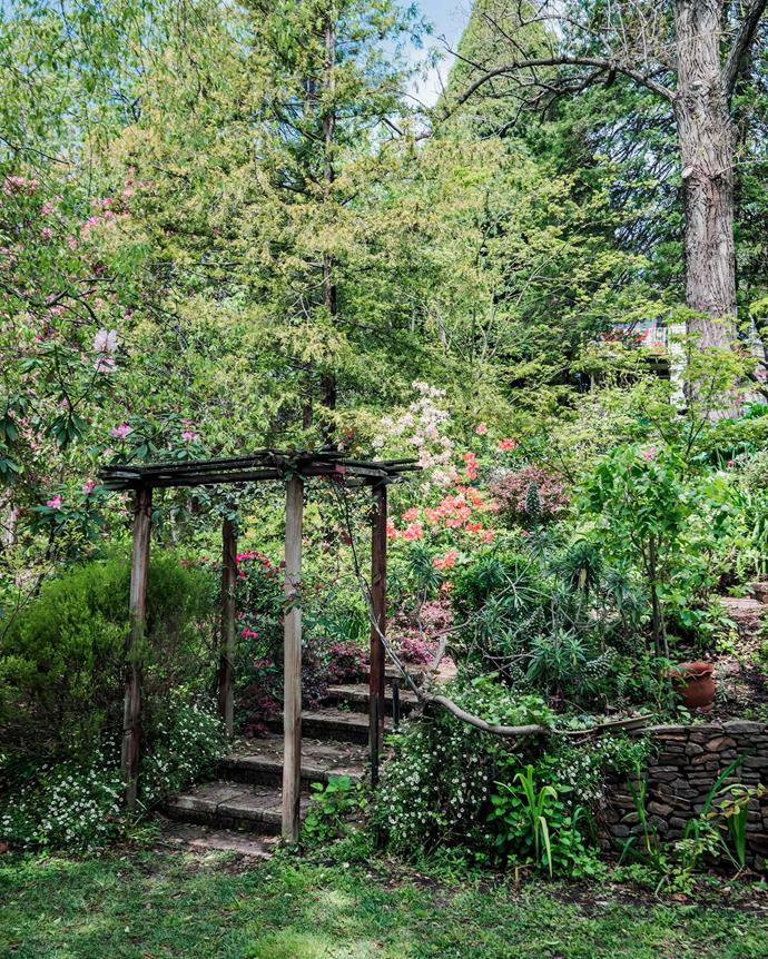 The rustic simplicity of the charming arbour over garden steps. | *Photography: Michael Wee*