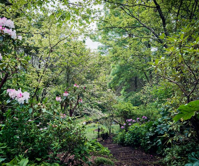 A view down to the lower garden. | *Photography: Michael Wee*
