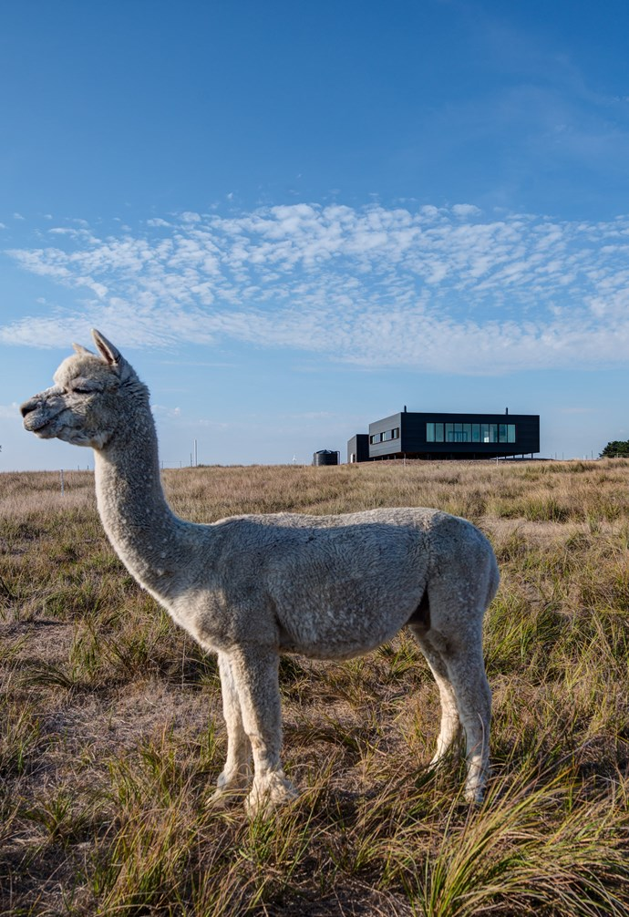 **Off-the-grid** French Island's hard-to-reach location means that any property must be self-sufficient. *Photography: Jaime Diaz-Berrio*.