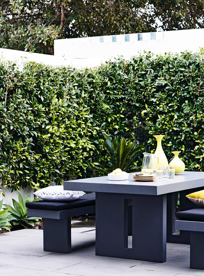 If you've got a sunny wall in the garden, tough hedging plants are the way to go. *Photo: Derek Swalwell / bauersyndication.com.au*