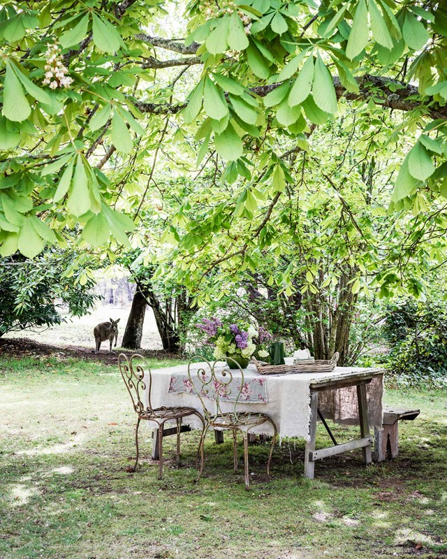 Add instant charm to any garden with a table full of spring blooms in a unique vessels. Try a single colour scheme of whites and greens for an elegant look or go for a riot of spring colour.