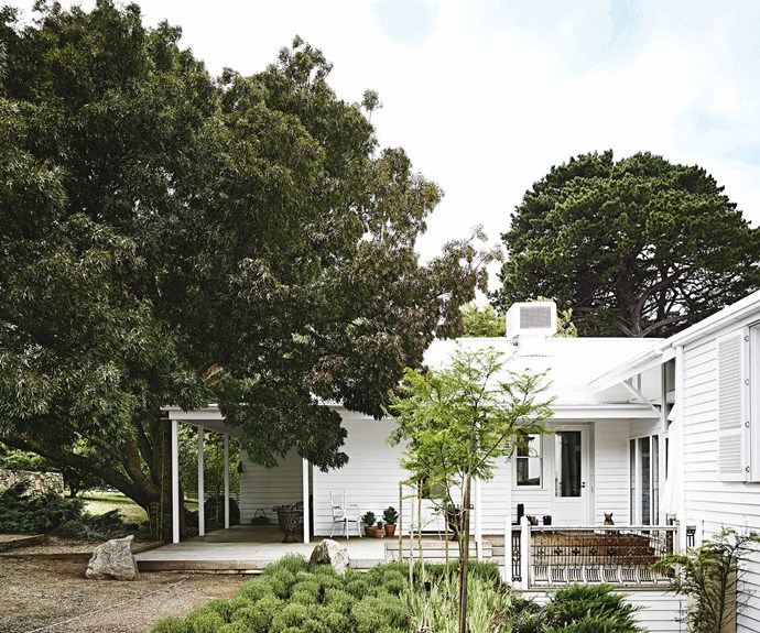 "On Victoria's Mornington Peninsula, both the exterior and interior of [this light-filled farmhouse](https://www.homestolove.com.au/a-light-filled-farmhouse-on-the-mornington-peninsula-13833|target=""_blank"") were painted in Dulux Whisper White, to create a peaceful feel. Its owners, Annie and Mike Dowd, wanted a quiet place to enjoy home-cooked meals and big nights in. 