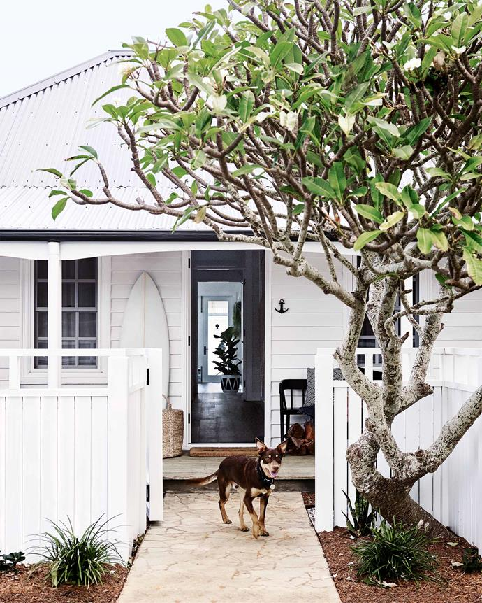 """The front of this [holiday farmhouse on the NSW South Coast](https://www.homestolove.com.au/coastal-farmhouse-reno-gerringong-18827