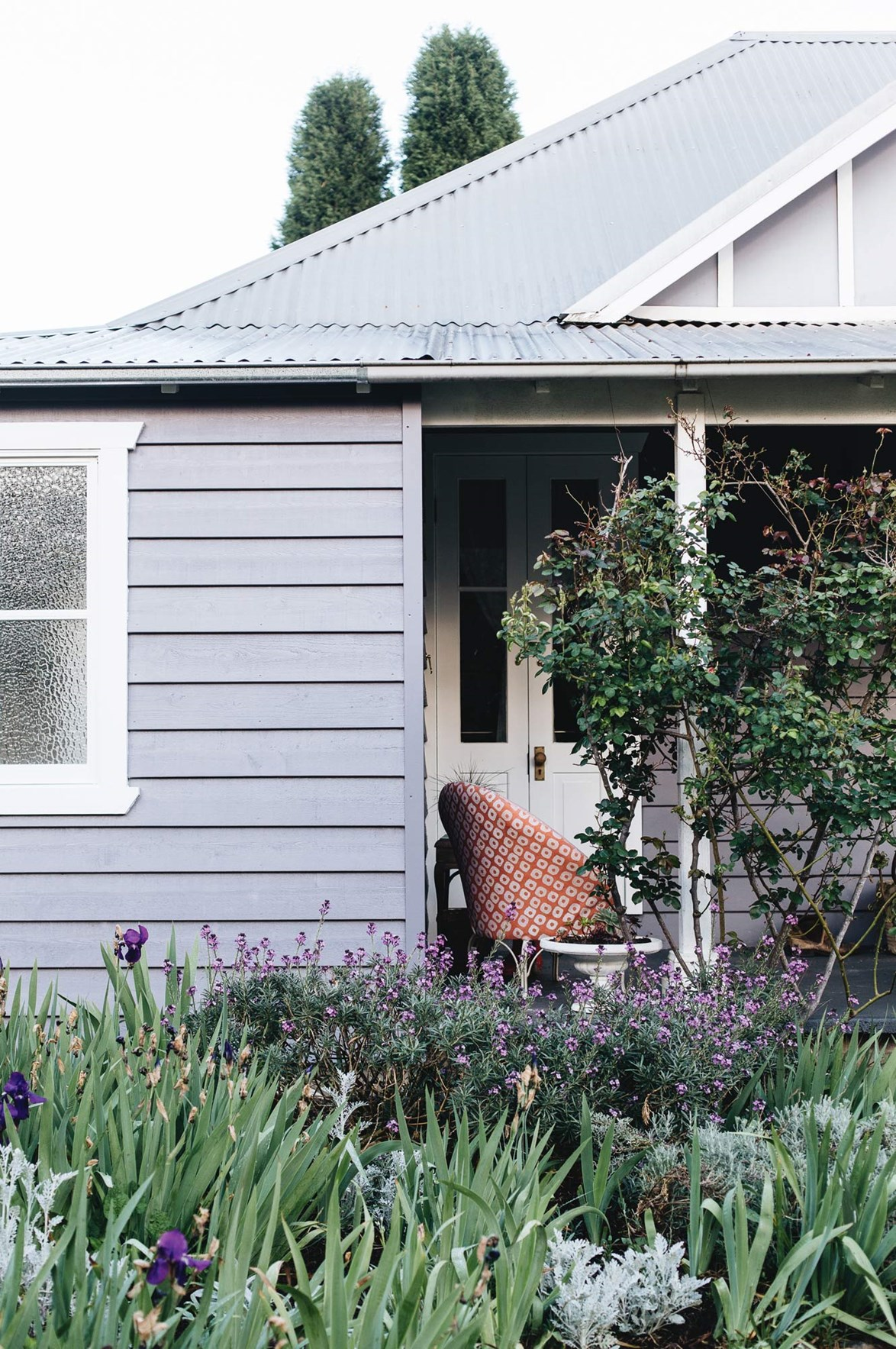 "Purple and green plantings perfectly complement the  purple-grey exterior of this [weatherboard home in the NSW Southern Highlands](https://www.homestolove.com.au/dream-home-surrounded-by-blooms-in-the-southern-highlands-14022|target=""_blank"")."