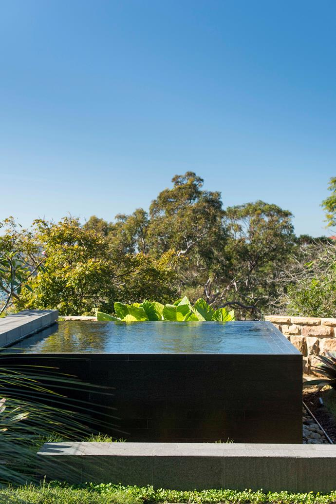 Infinity edge pools can be achieved with both concrete pools and fibreglass pools that sit above ground. *Photo: Nick Watt / bauersyndication.com.au*