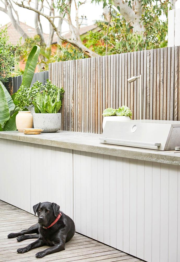 **Deck** The oversized benchtop has a 60mm polished concrete top and integrated Electrolux barbecue, with the HardiePlank panelling doors painted in British Paints' Arctic Grey to match the house colour. The white terrazzo bowl by the barbecue is planted with Mexican snowball succulents.
