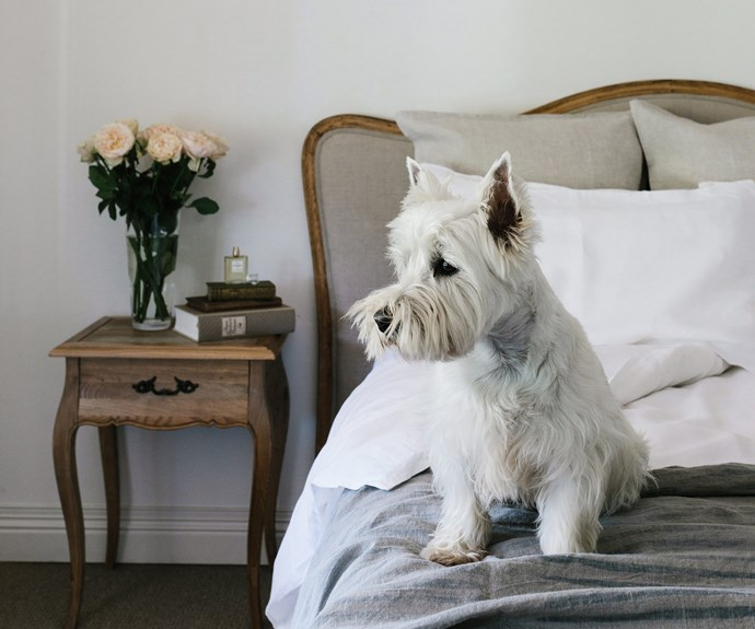 Ted in the main bedroom. While Laura and Boz were looking for a home, they prioritised a property that had room for animals, as well as a veggie garden. | *Photography: Marnie Hawson*