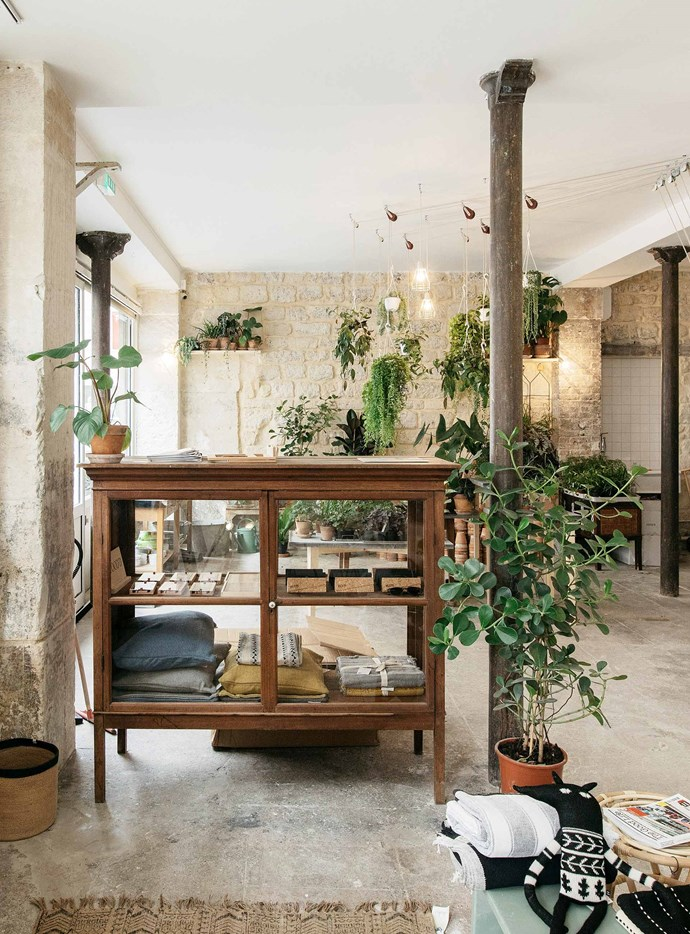 The stylish interior of Welcome Bio Bazar, adorned with hanging indoor plants.