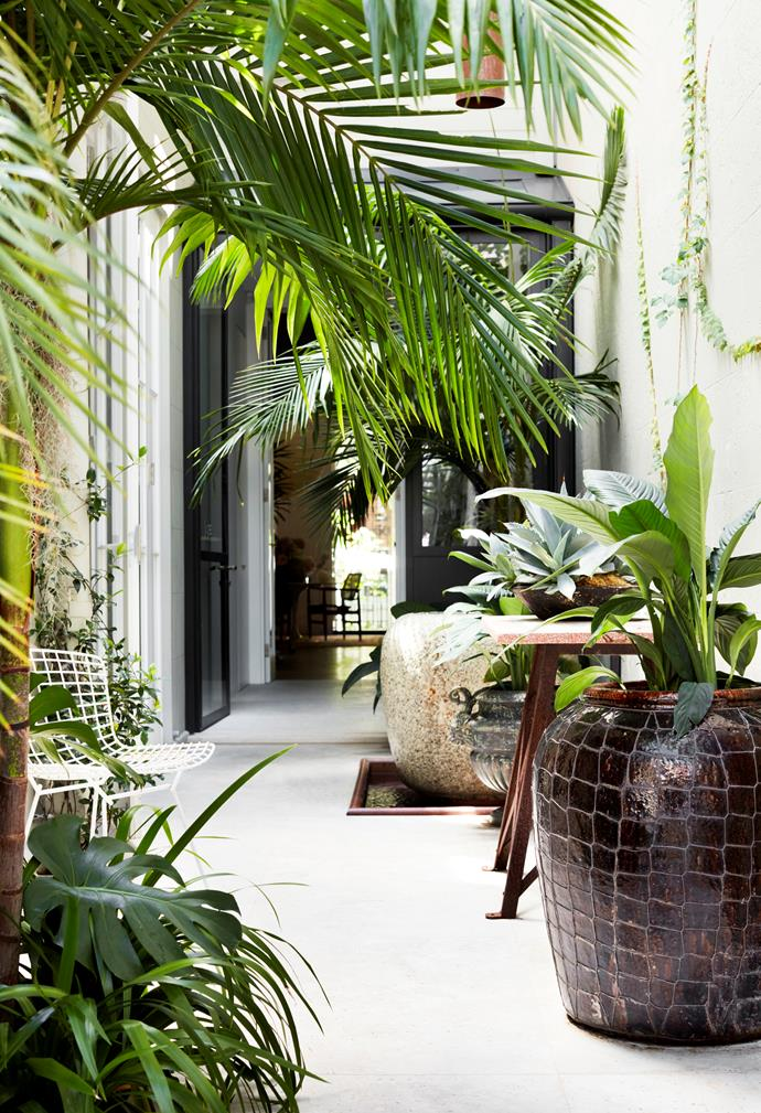 Limestone paving, tropical planting and an antique Japanese water feature in the courtyard.