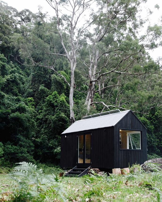Cabin 'Miguel' is located at the end of a 200 metre walk through rainforest in the NSW Southern Highlands.
