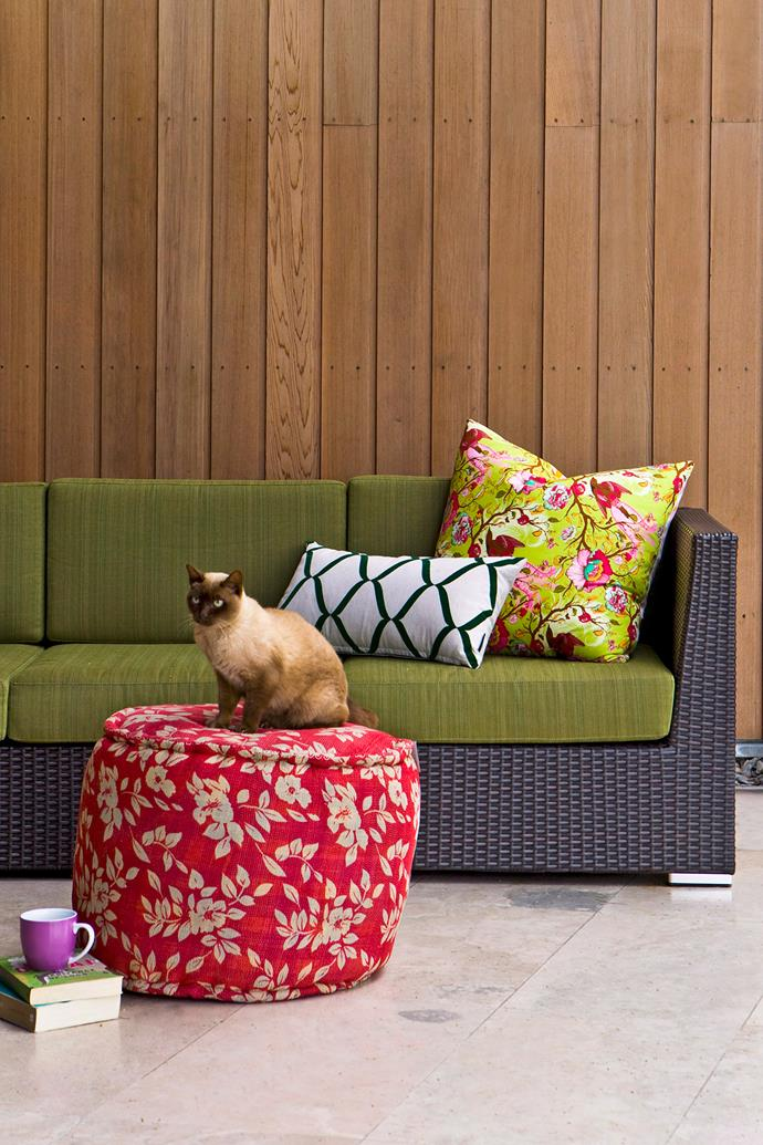 A good combination of both sunny and shaded spots in your garden will make your cat happy. *Photo: Maree Homer / bauersyndication.com.au*