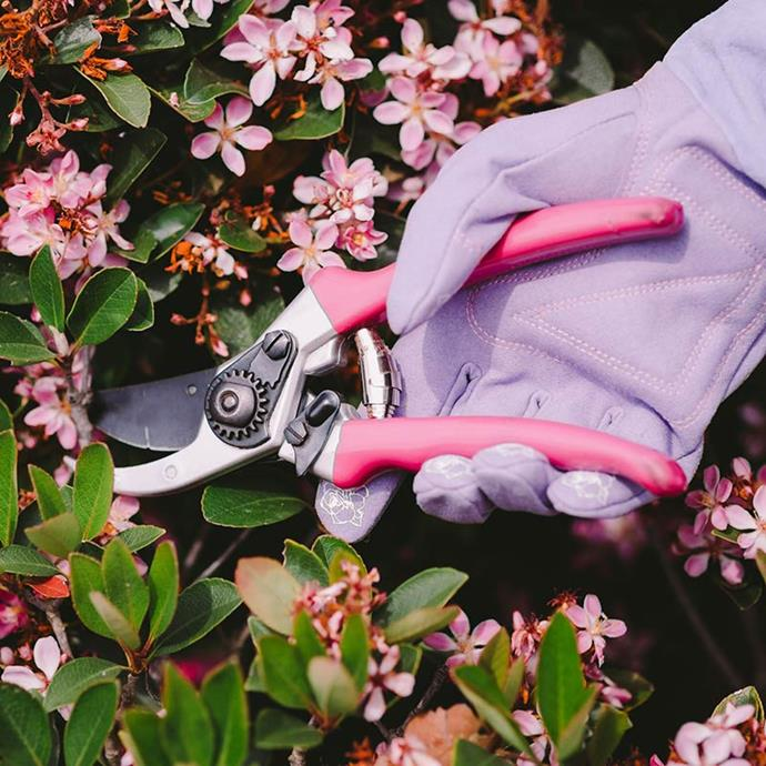 """Pink **secateurs** (225mm), $29.90, and leather **gauntlet gloves**, $35.90, both from [Hoselink](https://fave.co/2qgqYaa