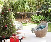 Christmas gardening tasks to start right now
