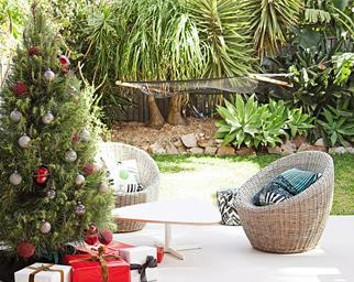 Christmas gardening checklist