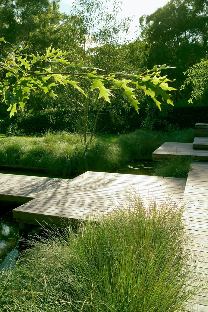 "Native ornamental grasses have been used extensively in this garden by [Peter Fudge](https://www.homestolove.com.au/the-ultimate-entertainers-garden-by-peter-fudge-gardens-4962|target=""_blank""). *Photo: Jason Busch / bauersyndication.com.au*"