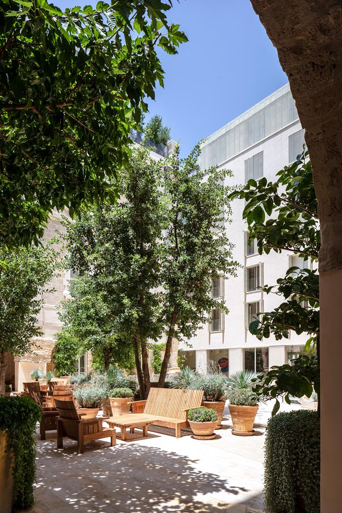 The internal courtyard where the old and new buildings intersect, with Carlos Motta chairs shaded by orange trees and cypress.