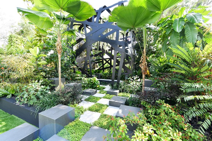 Ruffled fan palms form a canopy in Jim Fogarty's Immersion garden. 'As you journey into the heart of the Immersion garden, you enter a place where nature takes over, a calm and tranquil, water-filled space,' he says. *Photo: Singapore Garden Festival*