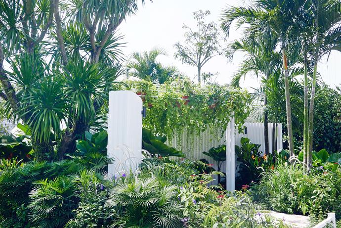 "White walls in the Equatorial Gardenesque display created by Sydney-based garden designer [Myles Baldwin](http://mylesbaldwin.com/|target=""_blank""|rel=""nofollow"")."
