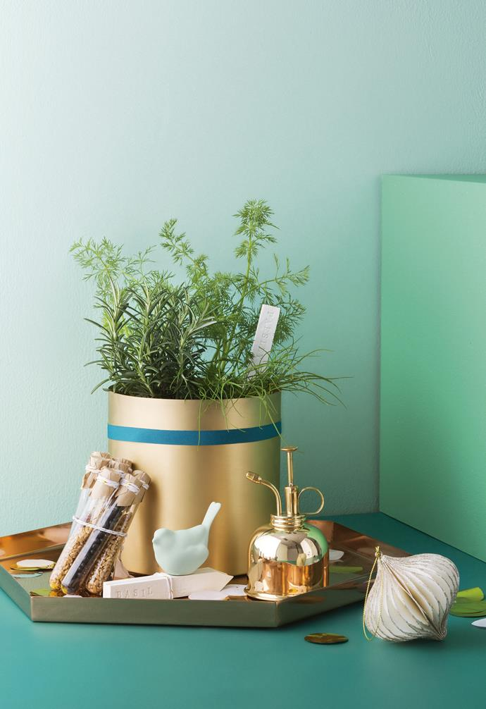 <b>Green thumb</b> Get your hands dirty and package up aromatic herbs and seeds for a future garden, presented in on-trend brass accessories for festive shine.   <br><b>Tip</b> Take seed packets to the next level. pour your chosen seeds into glass test tubes for a bespoke garden bed, ripe for the picking.   <br><b>Products</b> H Skjalm P brass flowerpot, $115, Lo &amp; Co Interiors. Hay gift ribbon in Dark Green , $14/10m, Cult. Glass test tubes, $1.65/pack of 5, and gold &amp; white metallic twine , $5.95/100m, Koch &amp; Co. Anne Black 'Bloom' bird ornament, $23, Elevate Design. Clay herb markers, $12/assorted set of 5, Restore Grace. Haws brass mister, $50, Ivy Muse. Poppies For Grace 'Jumbo' confetti in Metallic Gold &amp; Silver, $10.95/pack, Hip &amp; Hooray. Bloomingville hexagonal copper tray, $136.95, French Bazaar. Dazzling white &amp; gold paper ornament, $12.99, Spotlight. Background in 'Wash&amp;Wear' interior paints in Chloride, plinth in Funk, and floor in Forest Splendor, $46.90/1L, all Dulux.