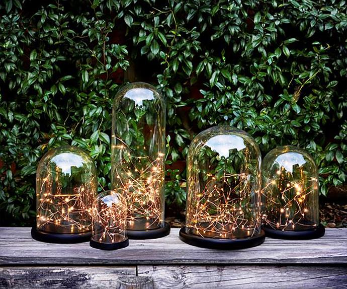 Glass cloches filled with glowing Christmas fairy lights