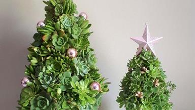 How to make a mini succulent Christmas tree