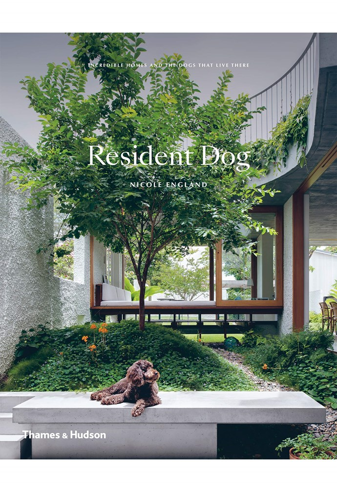 """Loved exploring these incredible homes and visiting their resident dogs? [Pick up a copy of *Resident Dog* now](https://thamesandhudson.com.au/product/resident-dog-incredible-homes-and-the-dogs-that-live-there/ target=""""_blank"""" rel=""""nofollow""""). *'Resident Dog: Incredible Homes and the Dogs that Live There' by Nicole England published by [Thames & Hudson](https://thamesandhudson.com.au/ target=""""_blank"""" rel=""""nofollow""""), $75.00.*"""