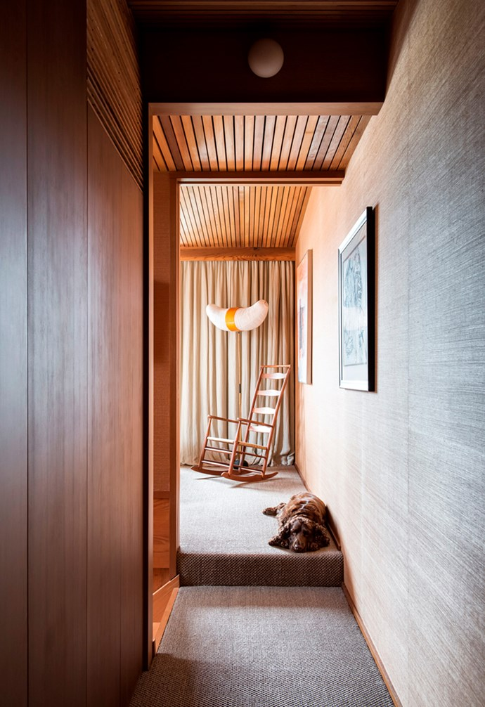 """Field Spaniel Bruno guards the hallway in his lovingly renovated Victorian terrace house designed by Kennedy Nolan in North Melbourne. Spoilt Bruno enjoys a custom-built steel and Perspex dog door, allowing him to enjoy the home's beautiful exterior gardens. *Architecture: [Kennedy Nolan](http://www.kennedynolan.com.au/ target=""""_blank"""")   Photography: Nicole England*."""