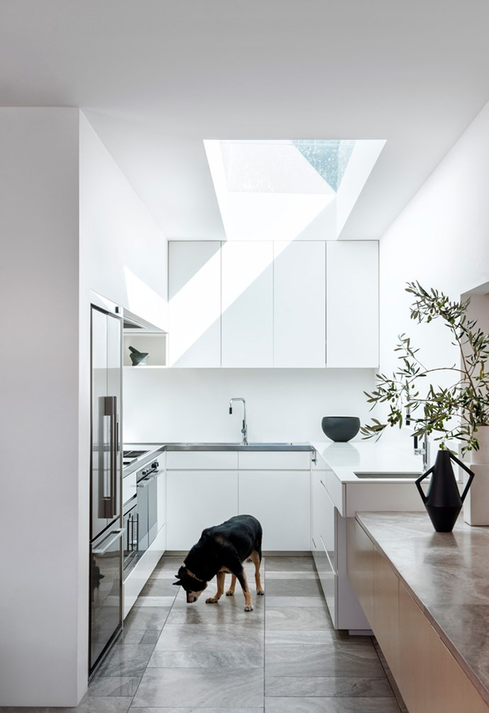 """Claire, a retired sheep dog, sniffs around the kitchen of her home in Balaclava, Melbourne. The original Victorian weatherboard has been lovingly restored, with a modern and spacious timber-clad extension added at the back. *Architecture: [Coy Yiontis](http://www.coyyiontis.com.au/ target=""""_blank"""" rel=""""nofollow"""")   Photography: Nicole England*."""