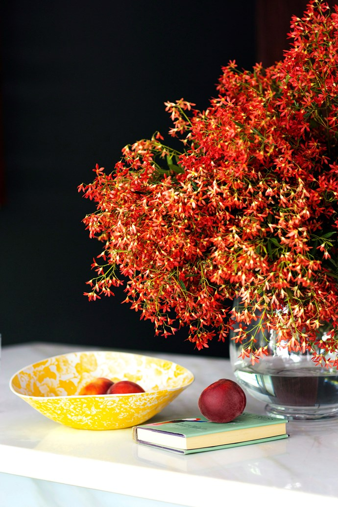 Having Christmas bush growing in your garden means you'll always have a festive centrepiece on hand. Photo: Maree Homer / *bauersyndication.com.au*