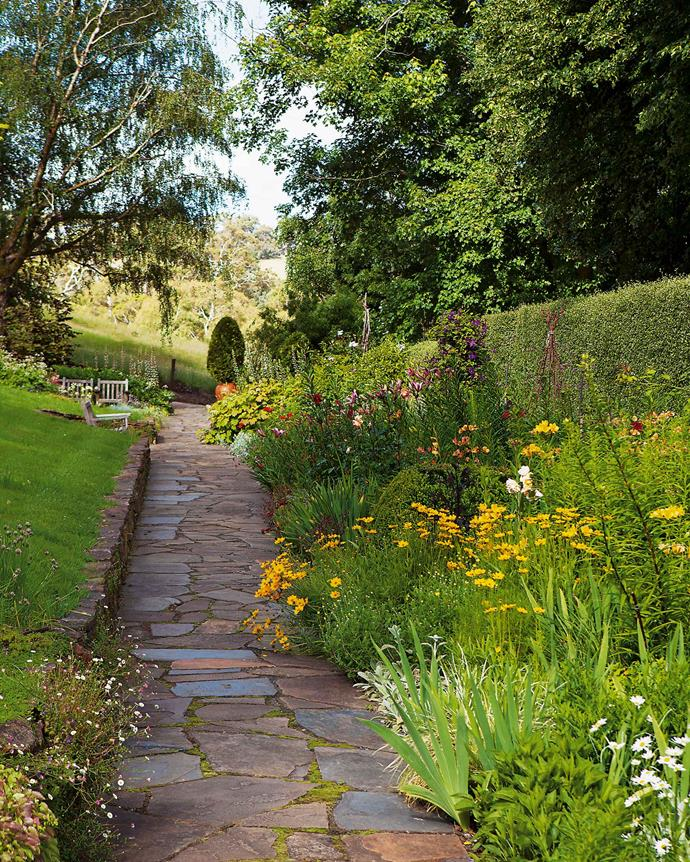 Backed by a pittosporum hedge, this 20-metre-long traditional flower border in the English style is planted in colour themes from pale tones of yellow and white through to rich purple. | *Photography: Simon Griffiths*