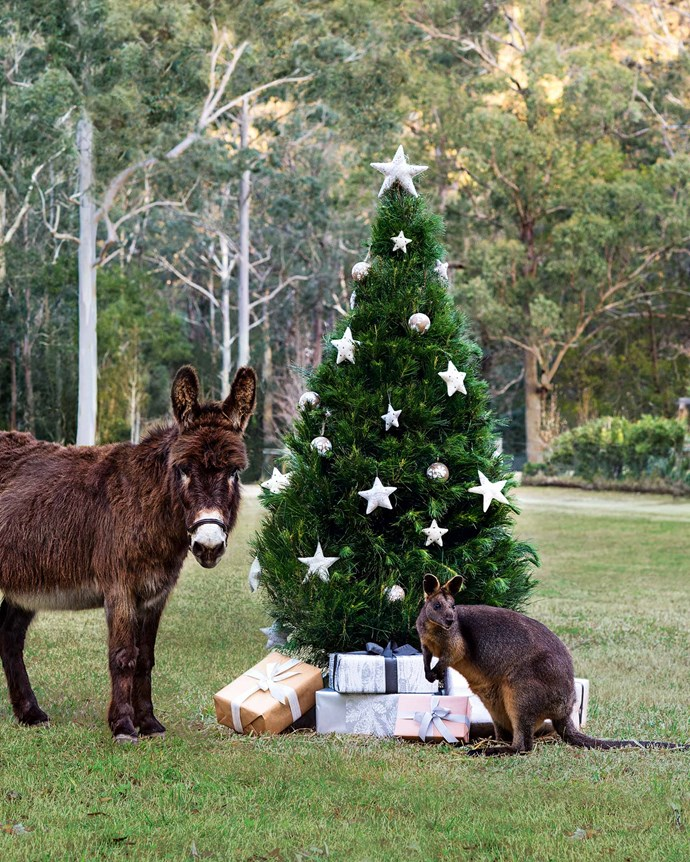 Toby the donkey and Cracker the wallaby also take part in the festivities. | Photo: Brigid Arnott | Styling: John Mangila